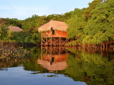 Juma Amazon Lodge - Hotel de Selva